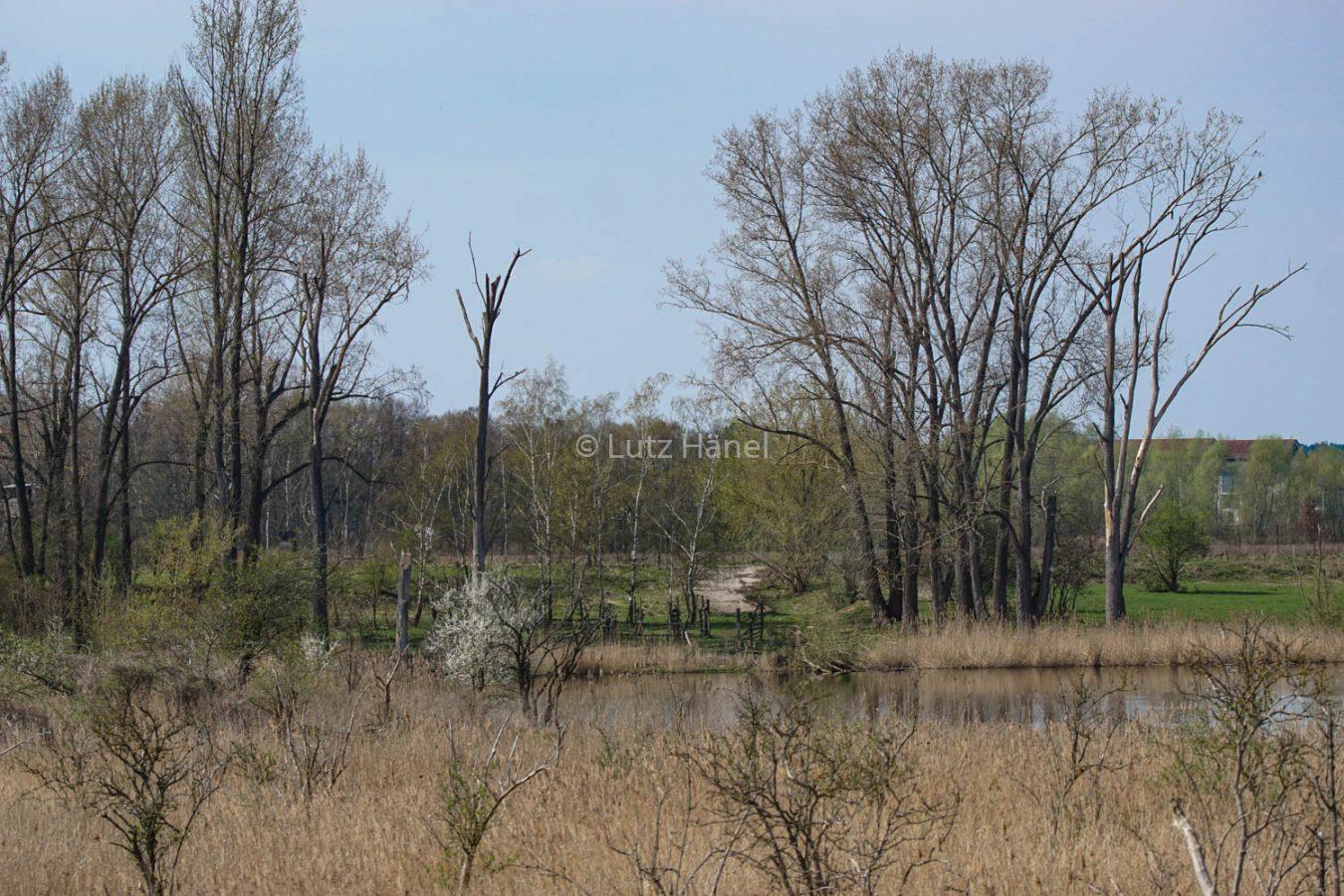 Mühlenbecker Land