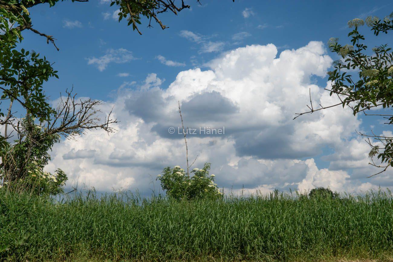 Wolken betrachten am Löwenzahnweg