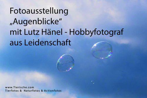 Fotoausstellung Hobbyfotograf aus Leidenschaft