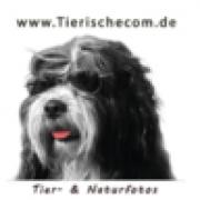(c) Tierische.com
